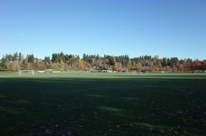 60 Acres Field