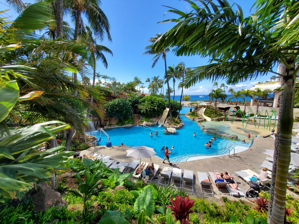 pool surrounded by tropical plants and palm trees