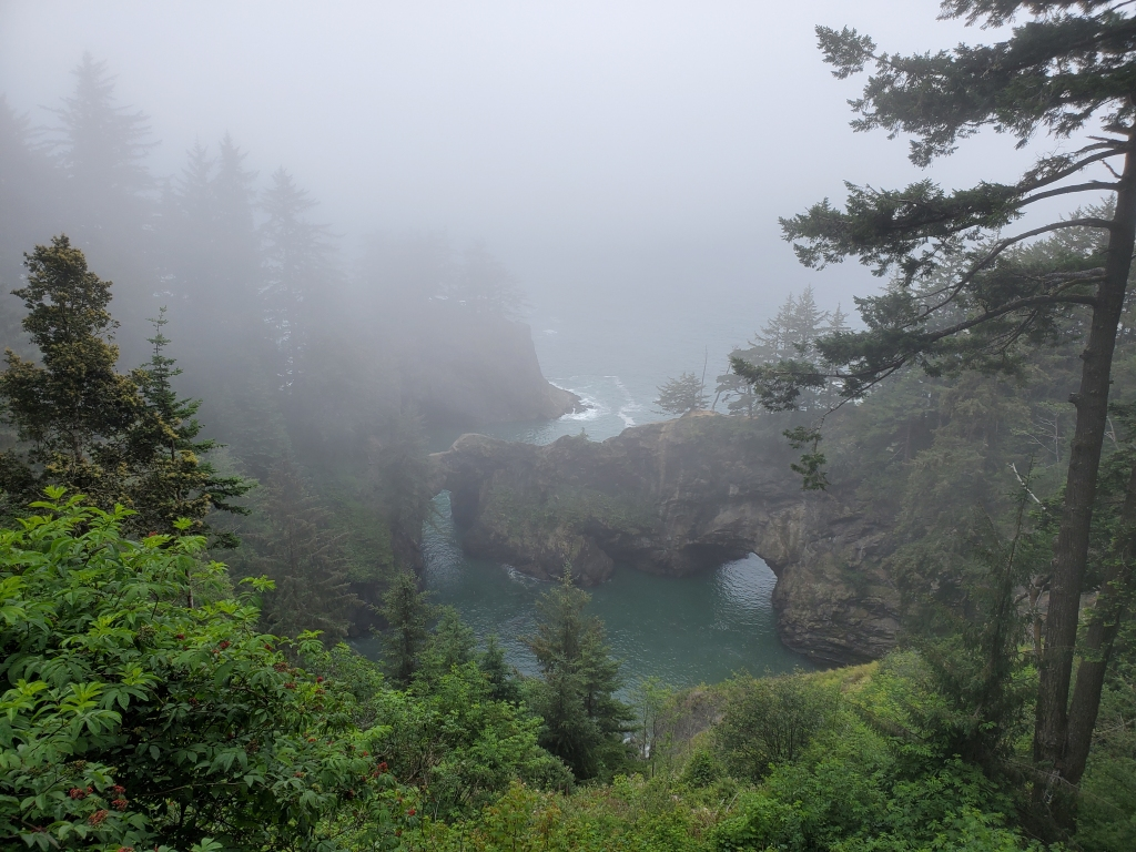 rock formation in water, surrounded by trees and thick fog