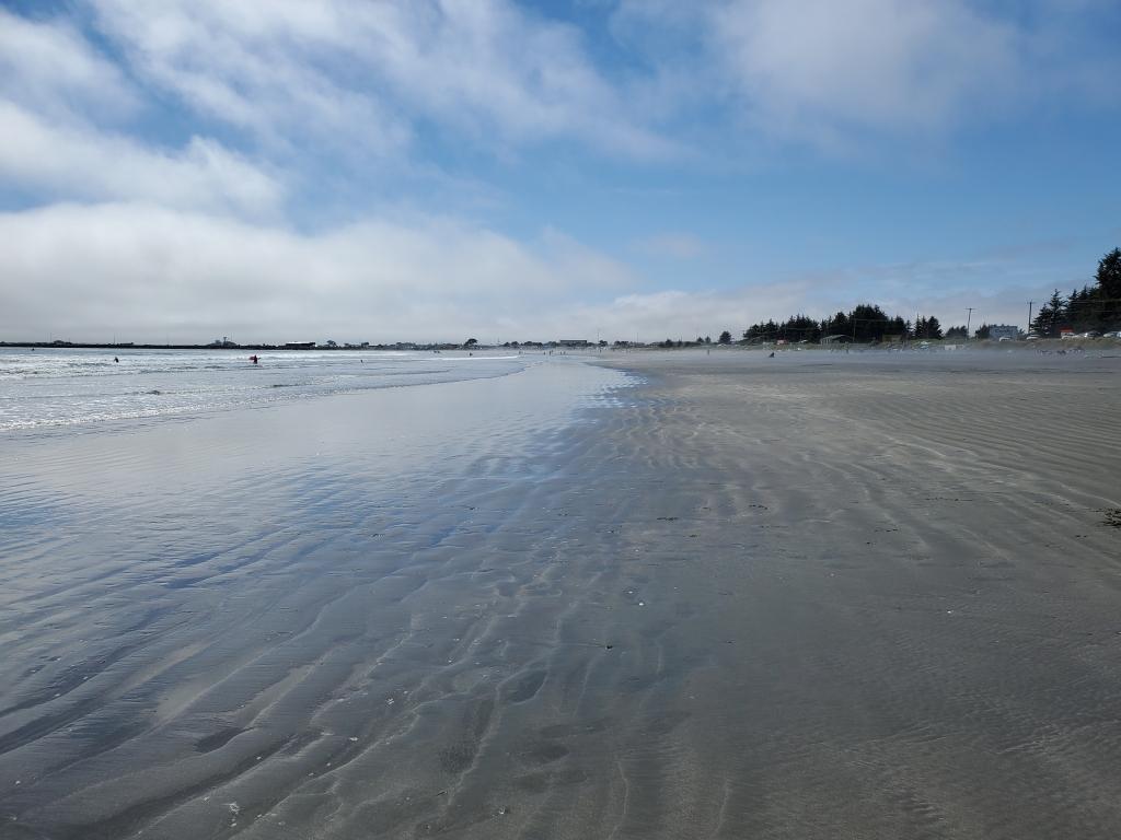 sandy beach with ocean on a sunny day